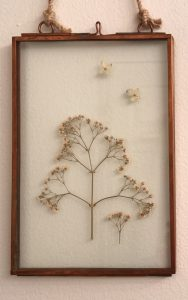 A glass case frame holding flowers